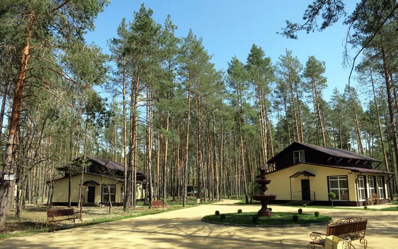 База отдыха для всей семьи в Брянской области