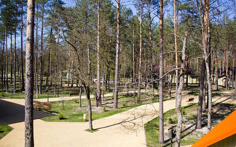 8-Territoriya-bazy-otdykha-Zelenyy-bor-Bryansk