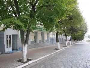 Вид на библиотеку с улицы Ленина