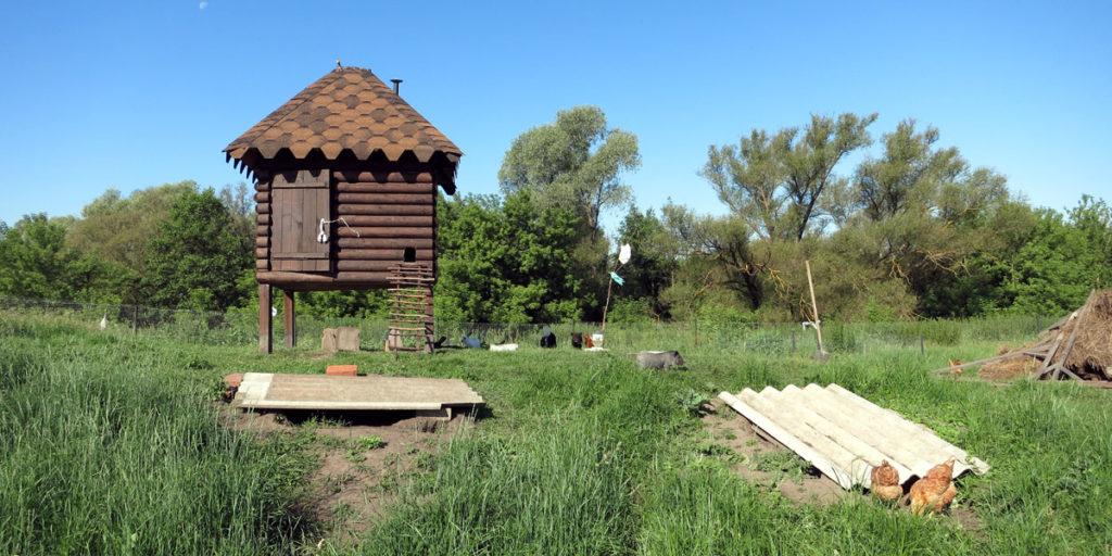 Мини деревенский зоопарк ферма под Орлом