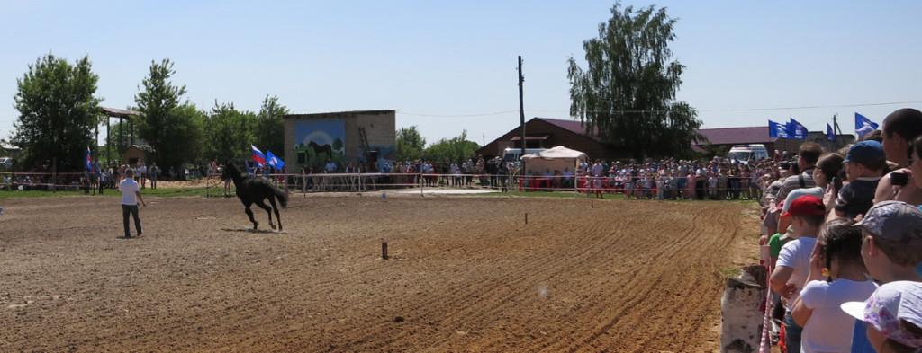 """Детский конный фестиваль """"Золотая подковка"""" в Орле"""