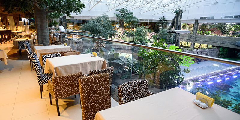 Фуд-корт кафе ресторанный дворик на 3 этаже Океанариума