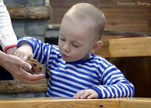 Дети знакомятся с питомцами под присмотром сотрудника зоопарка