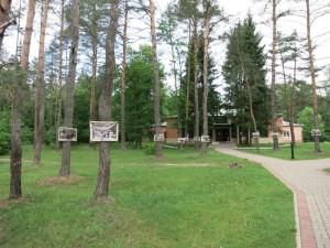 Парковая территория