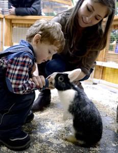 В «Ручном зоопарке» можно зайти в вольер к кроликам
