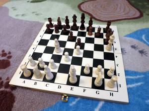 Где купить шахматы в Орле?