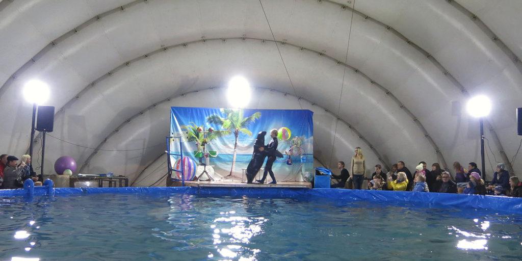 Степан с тренером танцуют танго