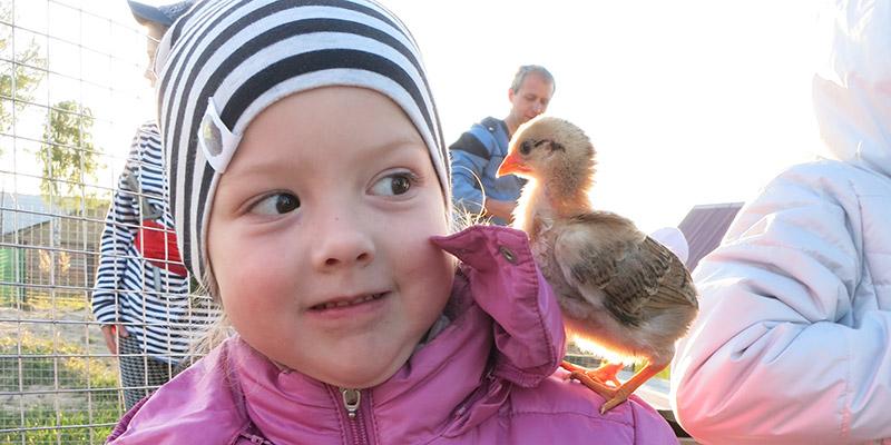 Аня Рыболовлева с цыпленком - Другая жизнь