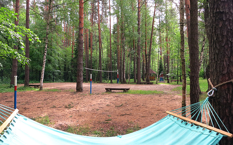 Гамак в лесу