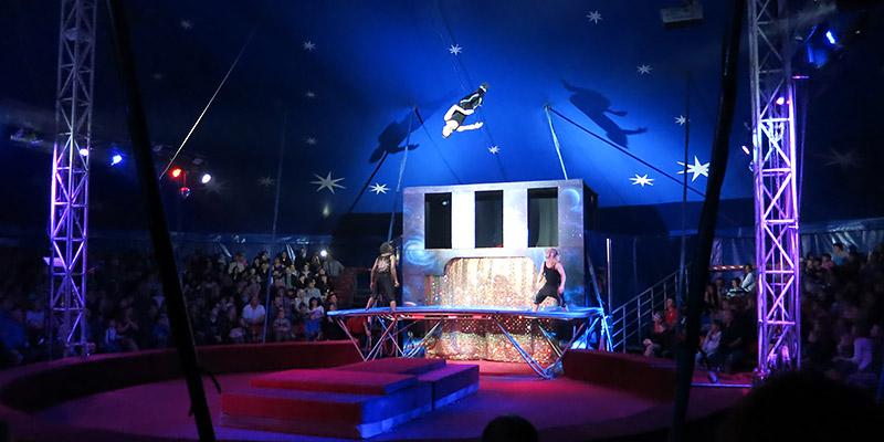 Евро цирк в Орле