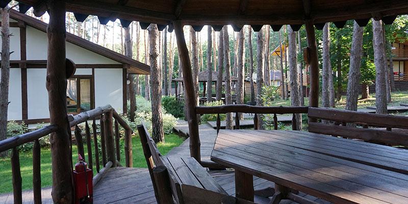 Беседки с мангалами на территории отеля в лесу