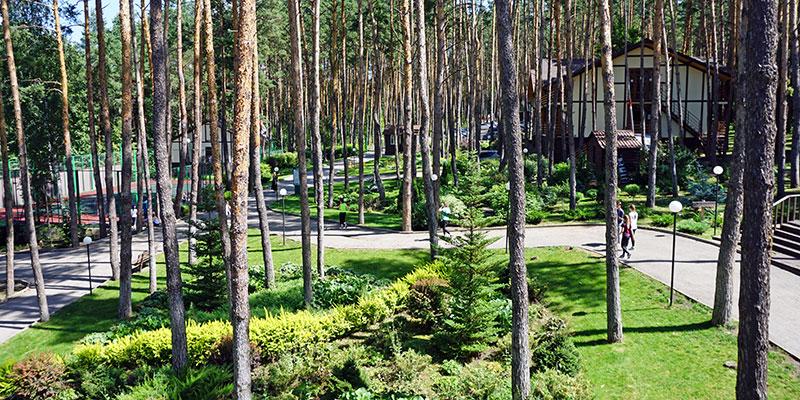 Территория загородного клуба Донской лес