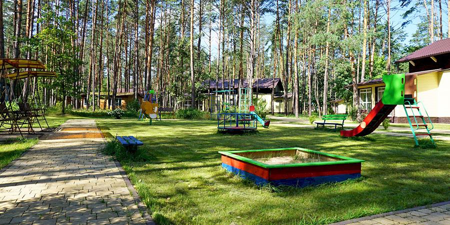 Детский городок в сосновом лесу